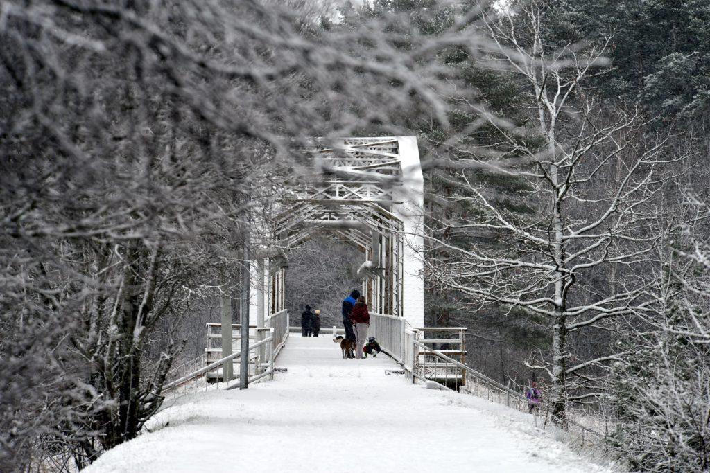 M3 ©Anita Tīlena – Old Narroy-gauge Railway Bridge - LATVIA