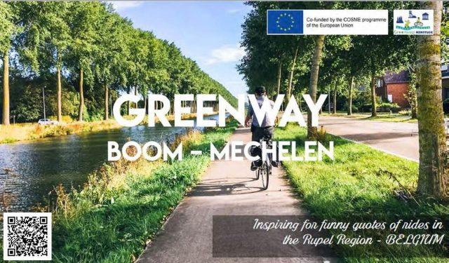 Boom – Mechelen